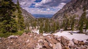 Garganta grande do pincel do parque nacional de Teton Fotos de Stock Royalty Free