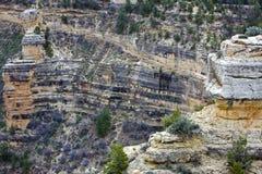 Garganta grande, o Arizona Fotos de Stock Royalty Free