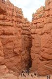 Garganta majestuosa en Bryce Canyon Formations Of Hoodos geología Viajes Naturaleza fotografía de archivo libre de regalías