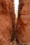 Garganta majestuosa en Bryce Canyon Formations Of Hoodos geología Viajes Naturaleza fotos de archivo libres de regalías