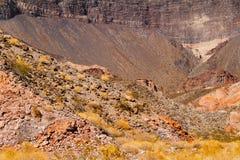 Garganta no Arizona, EUA Fotos de Stock Royalty Free