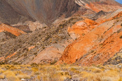 Garganta no Arizona, EUA Fotos de Stock