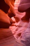 Garganta o Arizona EUA do antílope Imagem de Stock Royalty Free