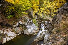 Garganta pequena do rio com cachoeira e folha do outono Fotografia de Stock