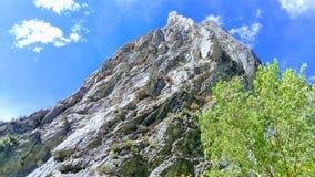 Garganta Rocky Twisted Outcrop da rocha imagens de stock royalty free