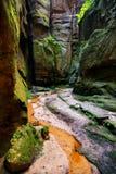 Garganta rocosa en Adrspach Imagen de archivo libre de regalías