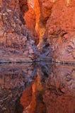 Garganta roja de la batería reflejada Imagenes de archivo