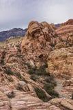 Garganta vermelha da rocha imagens de stock