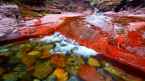 Garganta vermelha da rocha de Canadá vídeos de arquivo