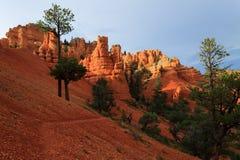 Garganta vermelha da rocha, EUA foto de stock