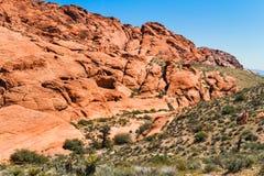 Garganta vermelha da rocha, Nevada Foto de Stock Royalty Free