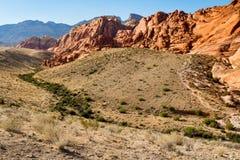 Garganta vermelha da rocha, Nevada Fotografia de Stock Royalty Free