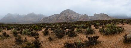 Garganta vermelha da rocha, Nevada, EUA Imagem de Stock