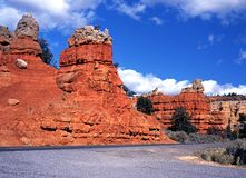 Garganta vermelha, Dixie National Park, EUA. imagem de stock royalty free