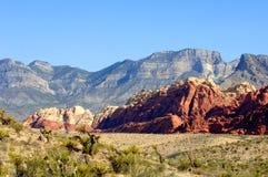 Garganta vermelha Nevada da rocha Foto de Stock
