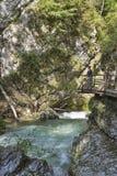 Garganta y mujer de Vintgar en la trayectoria de madera Sangrado, Eslovenia Foto de archivo