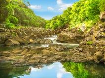 Gargantas negras del río en Mauricio fotografía de archivo libre de regalías