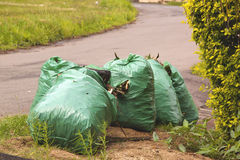 Gargbage Bags Waiting for Collectionon Side of Road Stock Photo