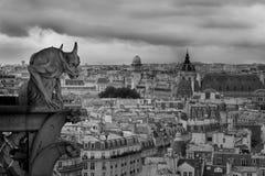 Gargiula Notre Dame de pari Fotos de archivo