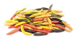 Gargollini italiano da massa com vegetais e especiaria Imagens de Stock
