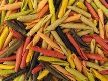 Gargollini italiano della pasta con le verdure e la spezia Immagini Stock Libere da Diritti