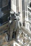 Gargouille à la cathédrale de Cologne, Allemagne Images stock