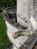Gargouille στο μπουντρούμι Septmonts στοκ φωτογραφία με δικαίωμα ελεύθερης χρήσης