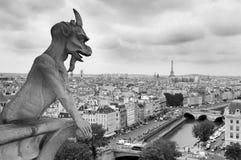 Gargouille Royalty-vrije Stock Fotografie