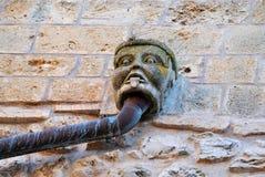 Gargouille dans la cour du château du Dentex Photos libres de droits