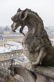 Gargouille de cathédrale de Notre Dame Photos libres de droits