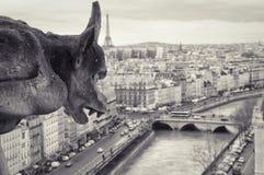 Gargouille de Notre-Dame Images libres de droits