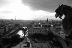 Gargouille die over Parijs letten op Stock Afbeeldingen