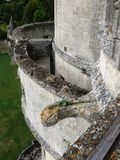Gargouille no Dungeon de Septmonts foto de stock royalty free