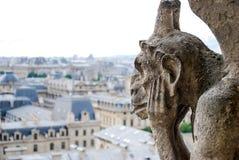 Gargouille in Notre Dame stock foto's