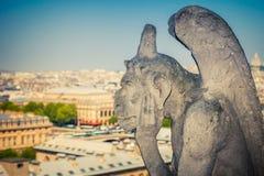 Gargouille op de Kathedraal van Notre Dame Stock Fotografie