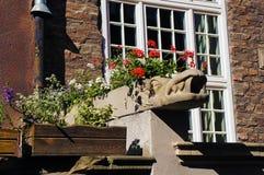 Gargouille op Mariacka-Straat in Gdansk Stock Afbeeldingen