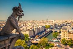 Gargouille op Notre Dame Cathedral Stock Afbeeldingen