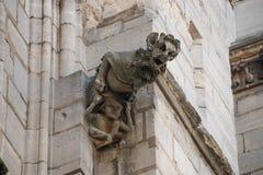 Gargouille op Notre Dame van Parijs, Frankrijk stock foto