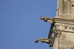 Gargouille sur la cathédrale d'Amiens Photo libre de droits