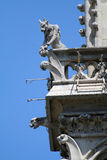 Gargouille sur une cathédrale photos libres de droits