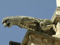 Gargouilles Stock Afbeelding