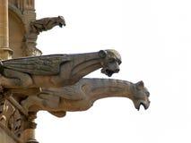 Gargouilles stock afbeeldingen