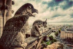 Gargouilles en hersenschimstandbeelden van Notre Dame over Parijs, Frankrijk wijnoogst Royalty-vrije Stock Afbeeldingen