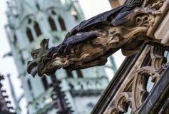 Gargouilles op de Kathedraal van St Vitus in Praag Stock Afbeeldingen