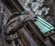Gargouilles op de Kathedraal van St Vitus in Praag Stock Fotografie