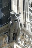 Gargoyle στον καθεδρικό ναό της Κολωνίας, Γερμανία Στοκ Εικόνες