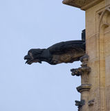Gargoyle του καθεδρικού ναού του ST Vitus Στοκ εικόνα με δικαίωμα ελεύθερης χρήσης