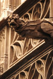 Gargoyle. A closeup view of a gargoyle or grotesque carving that is part of a rainwater downspout on large, ornate buildings stock photo
