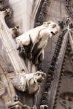 gargoyle Стоковые Фото