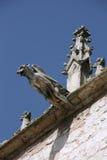 Gargoyle stock images